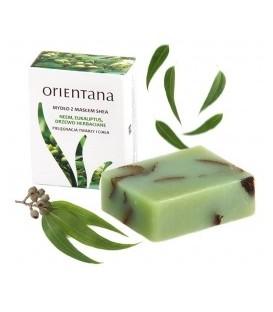 Mydło z masłem shea: Neem, Eukaliptus, Drzewo Herbaciane Orientana 100g