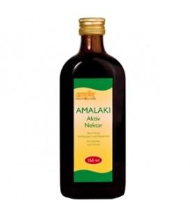 Amalaki Aktiv Nektar - Ajurwedyjski syrop owocowy 250 ml