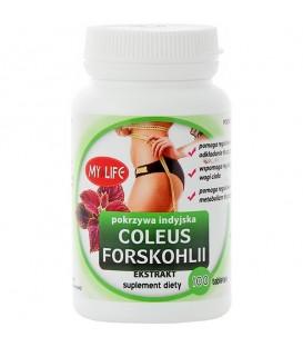 Pokrzywa indyjska Coleus Forskohlii - ekstrakt 100 tabletek - Suplement diety