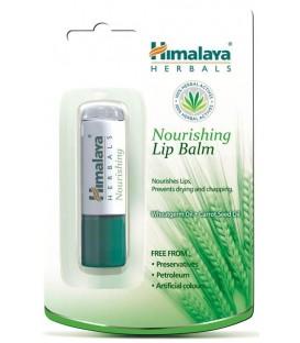 HM Balsam do ust w sztyfcie odżywczy 4,5g /Himalaya