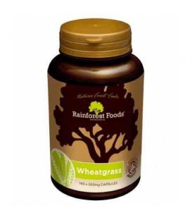 TRAWA JĘCZMIENNA & PSZENICZNA BIO (140 kapsułek x 500 mg) Rainforest Foods