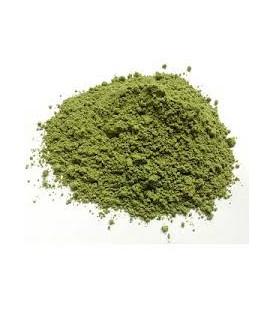 Liście Neem sproszkowane (powder) 100g